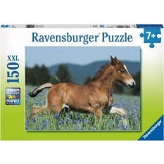 Kids Puzzles - 7+ yrs
